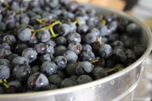fill-strainer-and-wash-grapes | KitchenCents.com