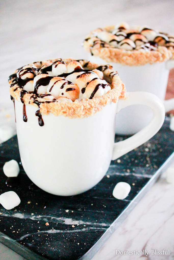 S'mores Hot Chocolate | 15+ Hot Chocolate recipes