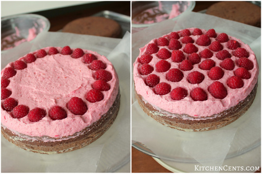 raspberry-layer