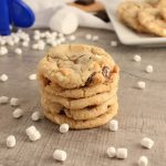 Easy Graham Cracker S'mores Cookies with Jet-Puffed Mallow Bits