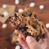 Quick & Easy Chewy Smores Brownies
