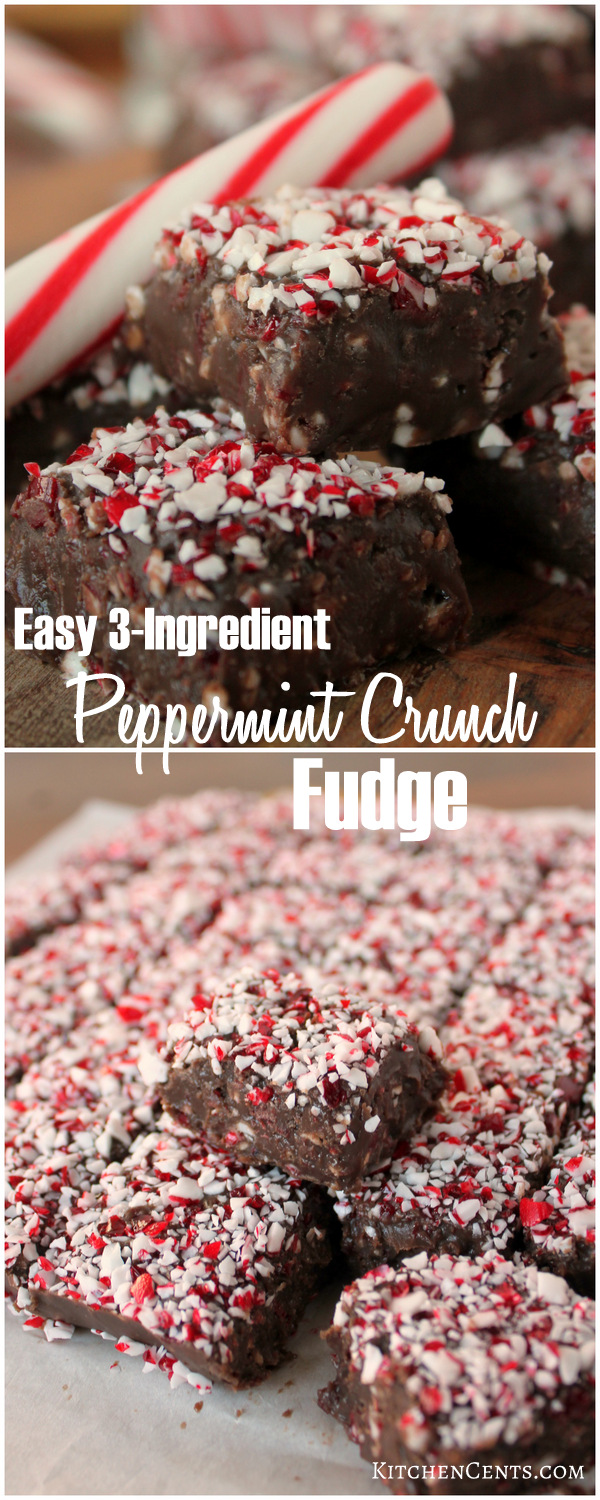 Easy 3-Ingredient Peppermint Crunch Christmas Fudge | Kitchen Cents