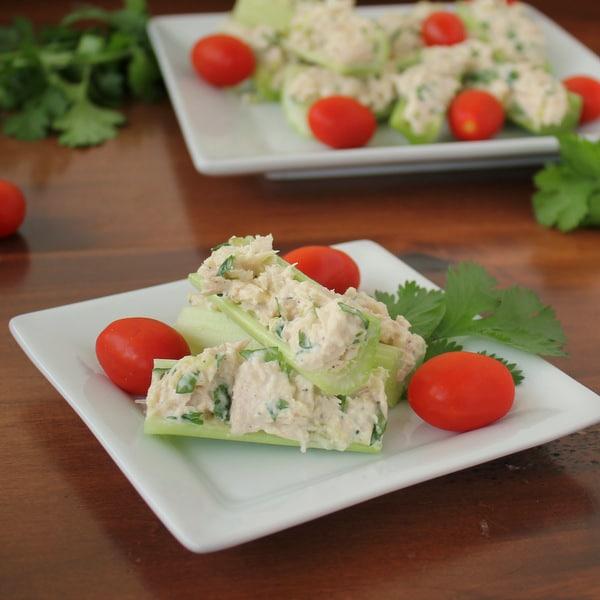 Healthy Tuna Celery Sticks | 21+ Low-Carb Snacks